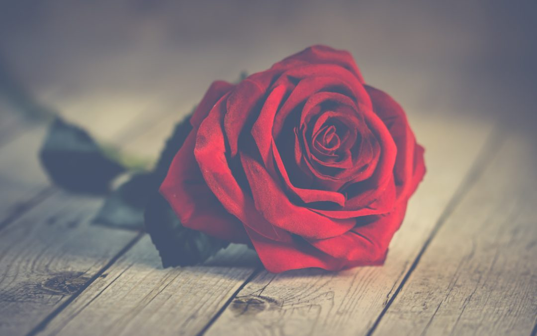 Top 7 'Musts' for Valentine's Day in Vancouver!